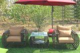 Tabella Furniture-112 esterno del rattan del sofà di svago