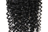 Brazilian Hair Kinky Curly Virgin Human Hair Weft