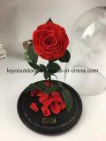 DIY는 100% 자연적인 실제적인 신선한 로즈 꽃 커버 유리 유구한 사랑을 보존했다