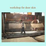 Chapa de madera de alta calidad de moldeo por frente de la piel de la puerta de HDF