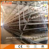 Il pollame chiaro della struttura d'acciaio si è liberato di per l'azienda agricola della gabbia di strato dalla fabbrica