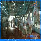 Completare il dell'impianto automatico di macello delle pecore
