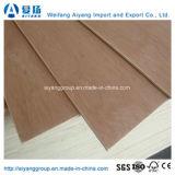 Bintangor/Okoume/lápiz rojo ceder para muebles de madera contrachapada comercial