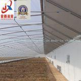 Serre solaire en plastique pour la plantation de légumes