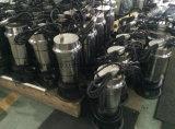 Bomba sumergible del motor eléctrico del jardín de Qdx del modelo nuevo con el Ce aprobado