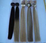 Hair Extensions에 Xuchang Beautyhair Factory Double Drawn Clip