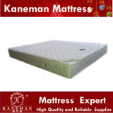Komprimiertes Cheap Quality Bonnel Spring Mattress für Wholesale und Retail