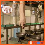 Riga strumentazione di macellazione dei maiali del macello del bestiame della macchina della Camera di macello del maiale della madre per il maiale del verro
