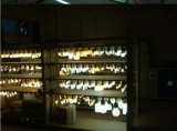 Lámpara compacta de aluminio revestida plástica ligera barata del precio LED 15W Globle R63