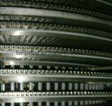 Máquina espiral del congelador rápido de la concha de peregrino IQF de los pescados