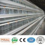 een batterijkooi van de Kip van de Laag van het Frame Automatische Voor het Landbouwbedrijf van het Gevogelte