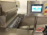 Dsm-Weicher Biskuit-Produktionszweig