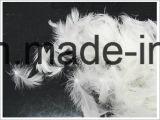 2-4 cm gewaschene weiße Ente-Feder (IDFL, USA-2000, EN12934, JIS, GB/T17685-2016)