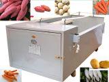 Моющее машинаа овоща Apple редиски картошки моркови шайбы Bush Vegetable