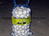 Sacchetto della maglia che imballa l'aglio bianco normale fresco di 5.5cm