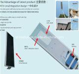 le panneau solaire mono de 30W 40W 50W 60W Sunpower a intégré tous dans un réverbère solaire de DEL avec le lumen élevé (SHTY-205-2100)