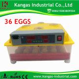 Meilleure vente Mini-incubateur/Mini-incubateur le plus récent pour 36 d'oeufs