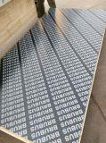 La película del comprador de la madera contrachapada hizo frente a la tarjeta de /Veneer de la madera contrachapada/al tipo de la madera contrachapada para la construcción