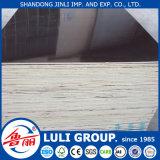 Madera contrachapada barata para la construcción de China Luligroup