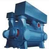 De blauwe Geschilderde Vacuümpomp van de Ring van het Water van de Fabrikant van China
