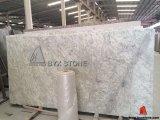 Plakken van de Steen van het Graniet van Andromeda de Witte voor Countertop en Tegels