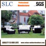 Sofà di vimini impostato/sofà di svago/mobilia del patio (SC-B1004)