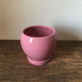 Piantatrice di ceramica del fiore della decorazione dell'interno dentellare