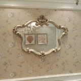 Spiegel van de Vorm van Iregular de Duidelijke en Gekleurde Zilveren