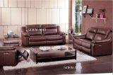 Combinazione stabilita personalizzata del sofà