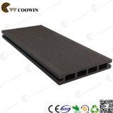 Composto di legno di Decking del fornitore della Cina (TS-01)
