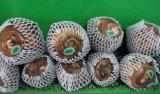 다채로운 EPE 거품 방어적인 그물세공 소매