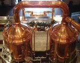 10hl van de Micro- van de bar de Apparatuur Brouwerij van het Koper