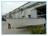 barco superior 6.1m aberto da potência do prazer de 20FT