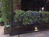 Indicatore luminoso solare decorativo esterno del LED con le strisce decorative dell'albero di Natale dell'indicatore luminoso della stringa di lunghezza LED della stringa 10m