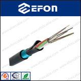 Cable de fibra óptica del miembro de fuerza central de G652D FRP (GYFTY)