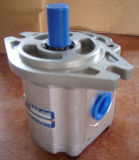 Шестеренчатый насос гидравлической системы для Сделано в Китае (CBF-F430-ALPL)