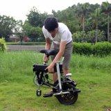 ساعد حارّ يبيع دوّاسة درّاجة عربة كهربائيّة مع 15-35 [كم رنج]