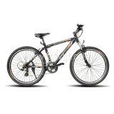 Vélo de montagne WTB102001 / vélo (bleu)