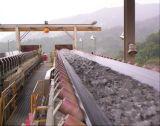 transportband van de Olie van de Transportband van de Breedte van 750mm De Bestand Rubber