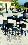 Barra esterna del rattan della mobilia del giardino che pranza insieme