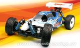 1/8 R/C Buggy Nitro (BB1001)