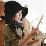 Hut-wilder konkave Form-Wolle-Bassin-Hut gestrickter Hut der Winter-populären Kinder