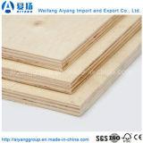 Contre-plaqué commercial favorable à l'environnement de faisceau de bois dur de Shandong