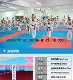Les arts martiaux dénomment le couvre-tapis de verrouillage d'étage d'EVA