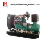 Electric Start 20kw 25kVA Natural Gas Generator (LR25)