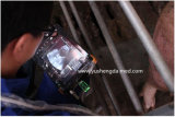 Escáner Equipo palmtop nuevo modelo para Animales Veterinaria Ultrasonido