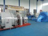 Turbo-générateur hydraulique de Francis de puissance moyenne (l'eau) 2~7.5MW/hydro-électricité /Hydroturbine