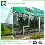 気候の制御システムが付いている商業ガラス温室