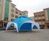 고품질 최신 판매 새로운 디자인 넓은 응용 당 사건 돔 천막