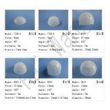 De plastic Fresnel van de Koepel van de Detector van de Motie van de pir- Sensor hw8120-4) Vrije Steekproef van de Lens (
